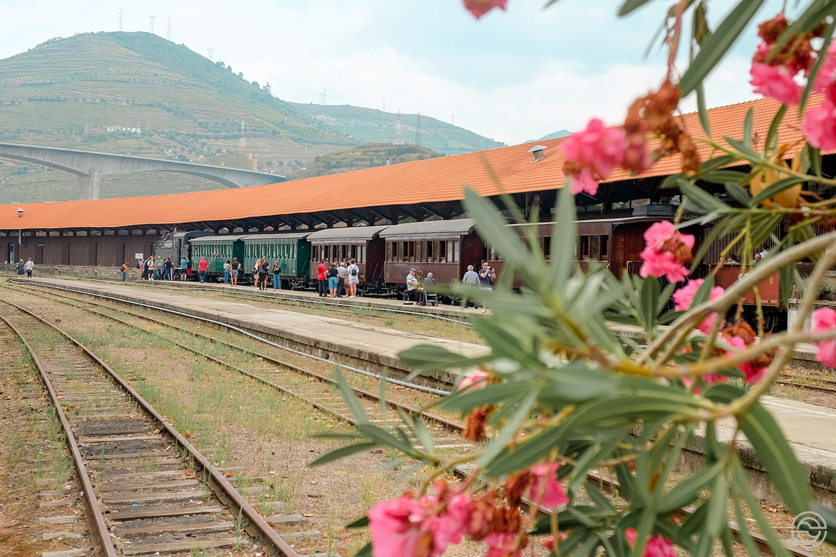 Douro Historical Train Regua Station