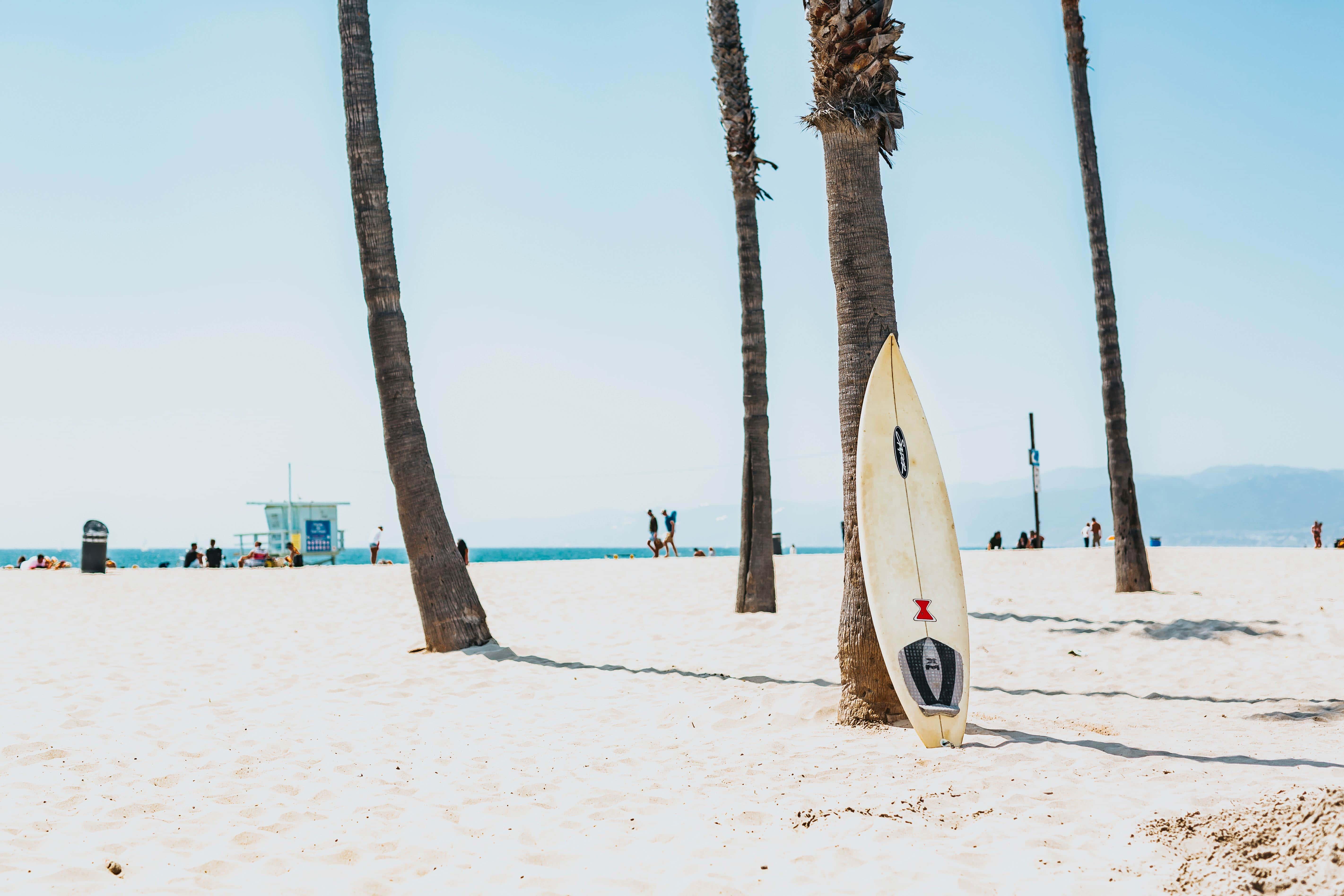 Surf na Califórnia