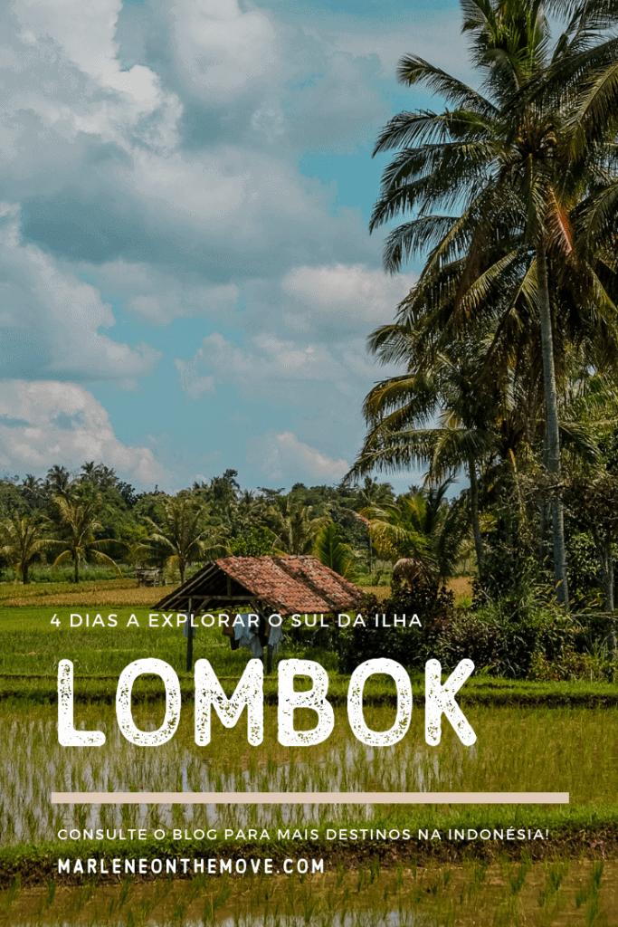 Lombok é uma ilha curiosa, que cruza tradição e religião com bonitas paisagens e uma evolução que parece já não mais parar.