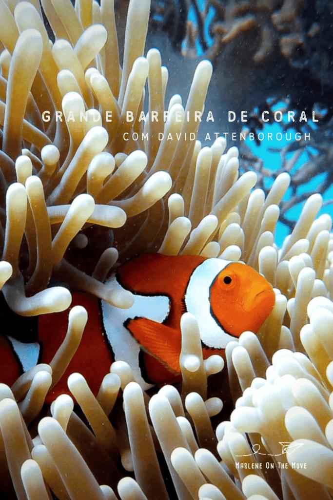 Uma viagem interativa que nos leva às profundezas da Grande Barreira de Coral, na Austrália, na companhia do maior naturalista de sempre: David Attenborough.