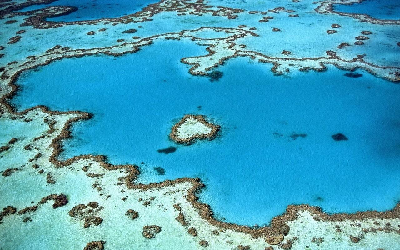 Grande Barreira de Coral - Great Barrier Reef