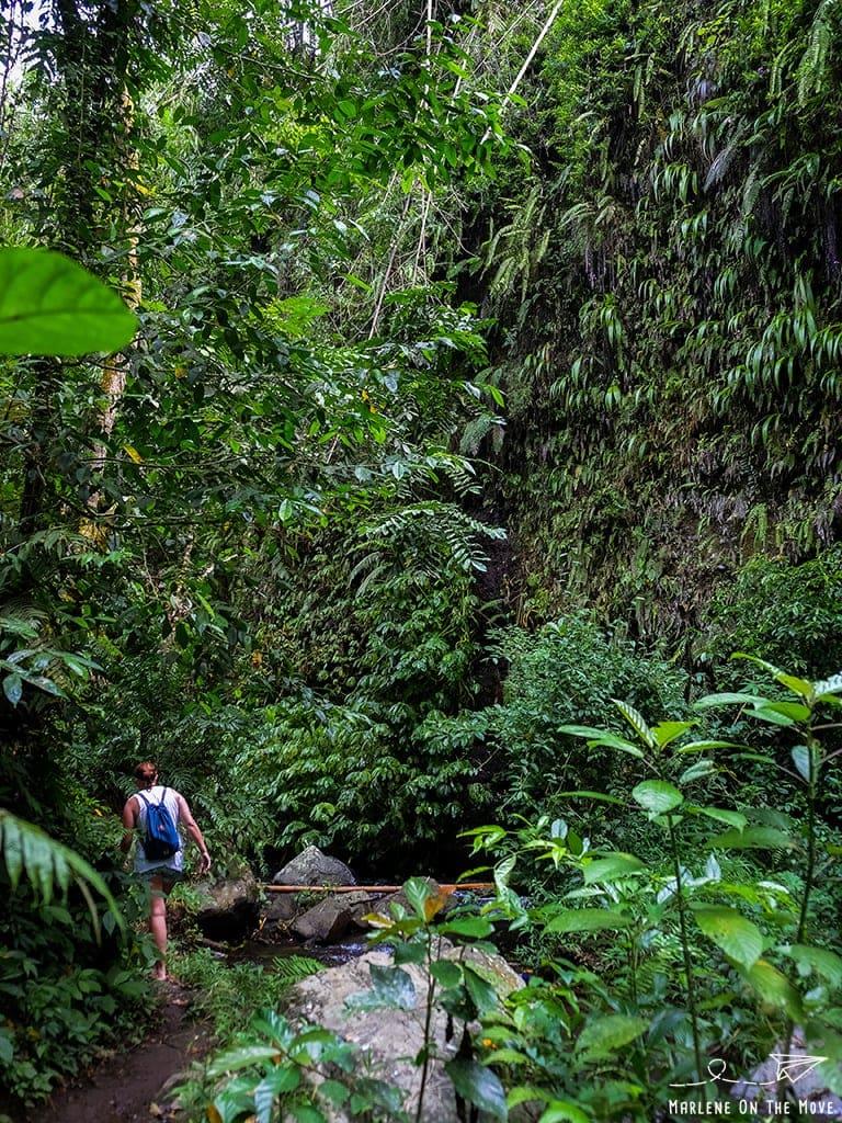 Cascatas Geopark Rinjani Waterfalls Lombok Indonesia